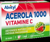 Govital Acerola 1000 à Clamart