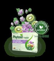 PHYTOXIL TRANSIT Comprimés B/20 à Clamart