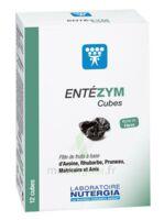 Entezym Cube à mâcher équilibre flore intestinale B/12 à Clamart