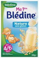 Blédina Ma 1ère blédine nature 250g à Clamart