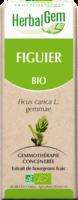 Herbalgem Figuier Macerat Mere Concentre Bio 30 Ml à Clamart