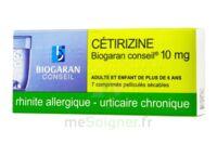 Cetirizine Biogaran Conseil 10 Mg, Comprimé Pelliculé Sécable à Clamart