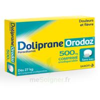 DOLIPRANEORODOZ 500 mg, comprimé orodispersible à Clamart