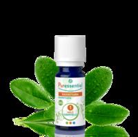 Puressentiel Huiles essentielles - HEBBD Ravintsara BIO* - 5 ml à Clamart