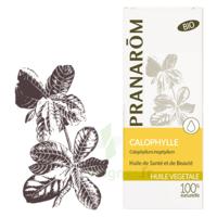 PRANAROM Huile végétale bio Calophylle 50ml à Clamart