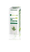 Huile essentielle Bio Pin sylvestre à Clamart