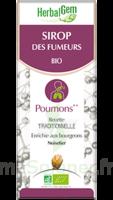 Herbalgem Sirop Bio Des Fumeurs 150ml à Clamart