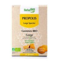 Herbalgem Propolis Large Spectre Gomme Bio B/24 à Clamart