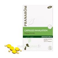 Aromaforce Caps inhalation bio B/15 + Inhalateur à Clamart
