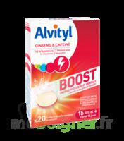 Alvityl Boost Comprimés B/20 à Clamart