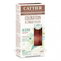 Coloration Capillaire à L'argile Acajou - 120 Ml à Clamart