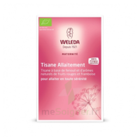 "Weleda Tisane Allaitement ""Fruits rouges"" 2x20g à Clamart"