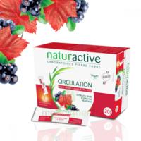 Naturactive Phytothérapie Fluides Solution Buvable Circulation 2b/20 Sticks/10ml à Clamart