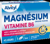 Govital Magnésium Vitamine B6 Comprimés B/45 à Clamart