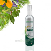 Naturactive Assaini'spray 200ml à Clamart