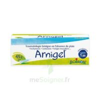 Boiron Arnigel Gel T(alumino-plastique)/45g à Clamart