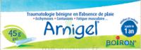 Boiron Arnigel Gel T/45g à Clamart
